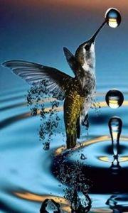 humming water
